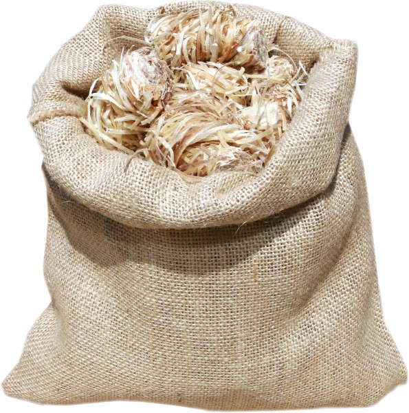 Holzwolleanzünder Burnys 50 Stück Jutebeutel