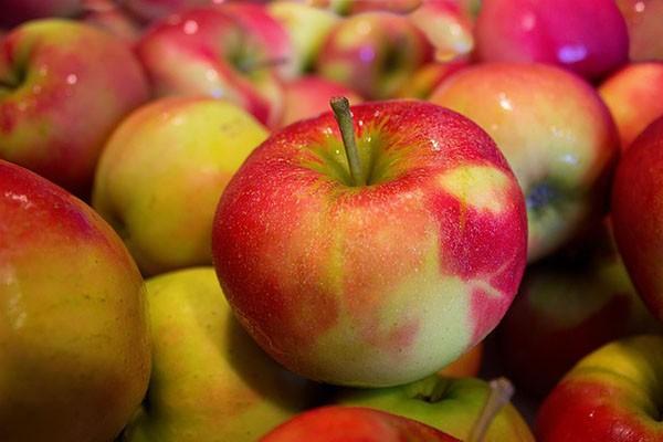 Futteräpfel 6kg