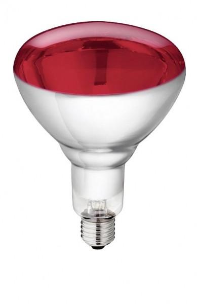 Hartglas-Infrarotlampe Philips 150 W