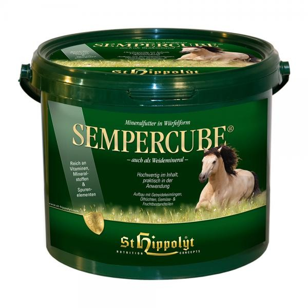 St. Hippolyt Semper Cube- Mineralwürfel zur Nährstoffergänzung