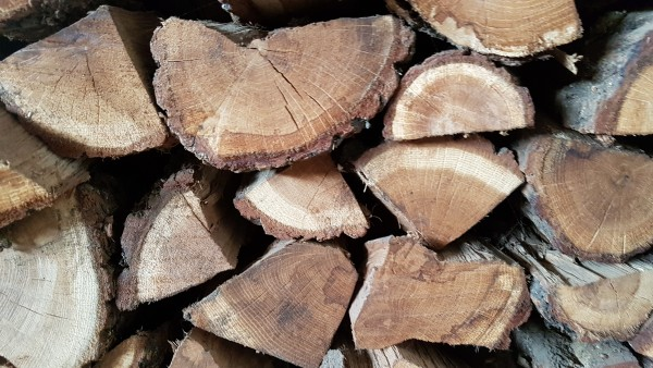 Palette Brennholz Eiche kammergetrocknet