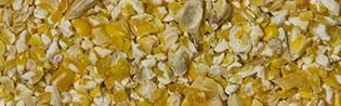 Scar Vital Mais gelb gebrochen 25kg